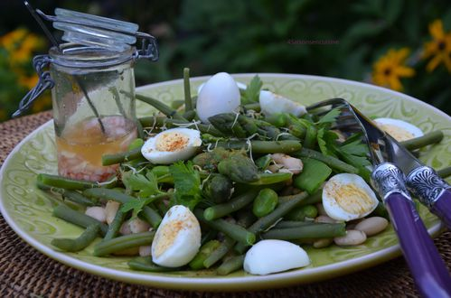 Salade aux 5 haricots