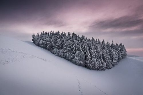 paysage-hiver-47