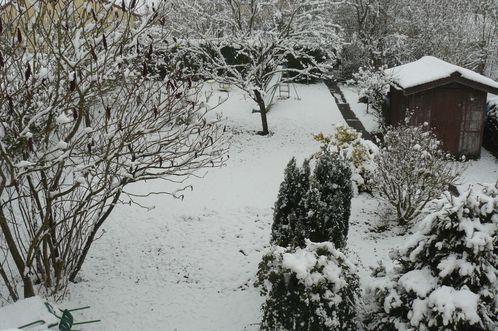 neige nov 2010 001