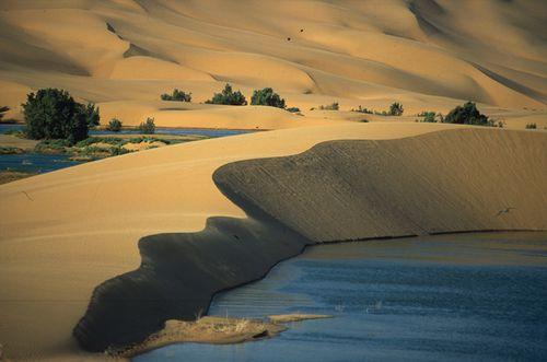 paysage maroc[1]