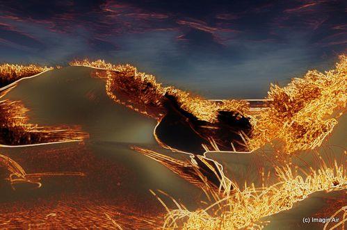 dunes-oleron-2-gif.jpg