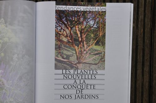 30-ans-de-creation-de-jardins-en-France-janv-2013 0144 (Cop