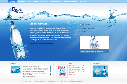fontaine-didier-site-web-martinique-c-direct.png