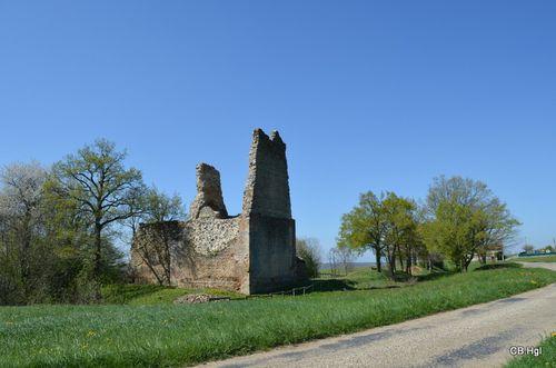 Etang-St-Clair-sur-Galaure-0687.JPG