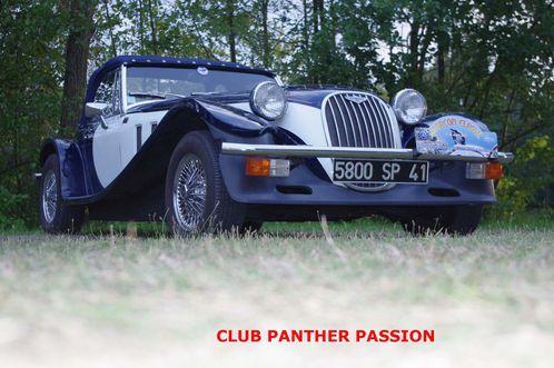 Panther-au-Cmping.jpg