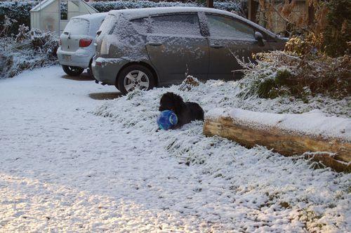 340 - neige surprise 19