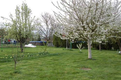 180 - jardin de printemps 1