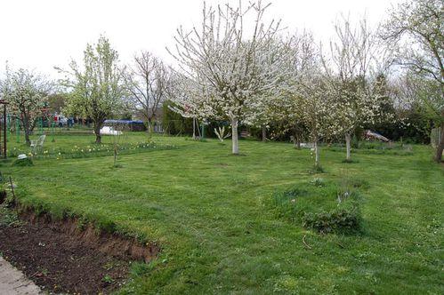 180 - jardin de printemps 2