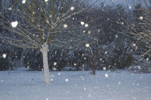 719 - la neige 9