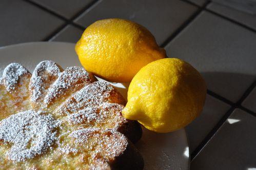 Gâteau zestes de citron (6)