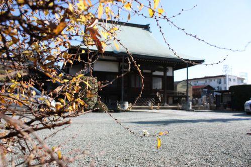 2007-0104_1.JPG