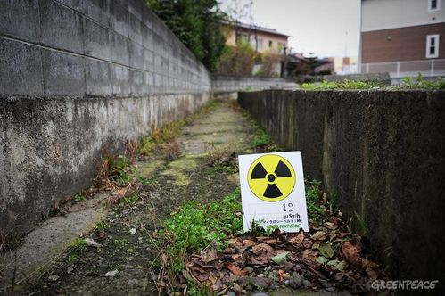 Fukushima---des-efforts-de-decontamination-vains.jpg