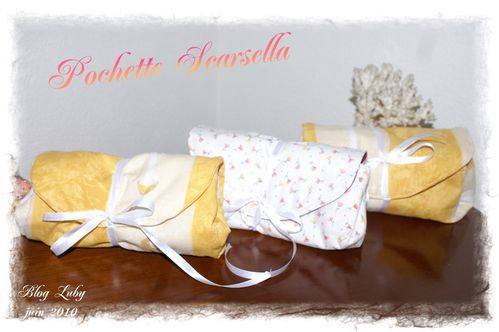 06 22 06 2010 trousse scarsella (1)