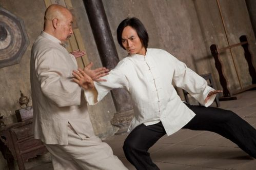 tiger-hu-chen-man-of-tai-chi-600x399.jpg