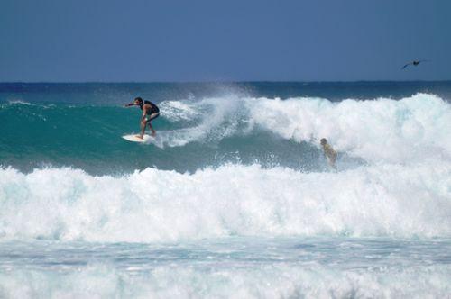 surf 23 fev 12 Fabo (1)