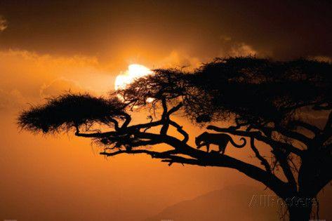 ciel-africain.jpg