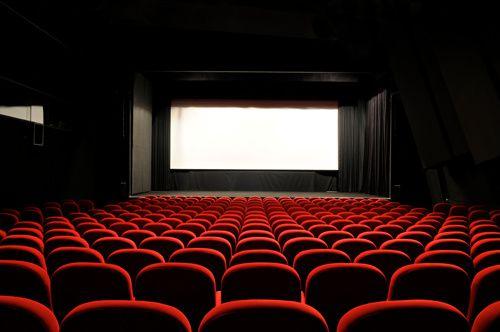FIF 2010 L HAEGELI salle de cinema 0026