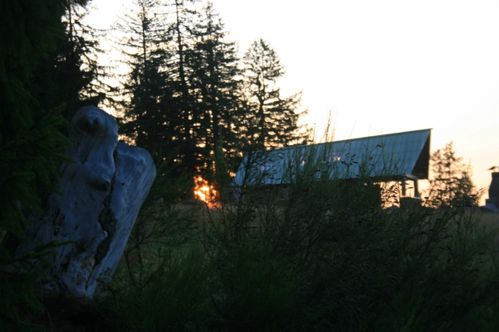 Abri---Maison-forestiere-II 0180
