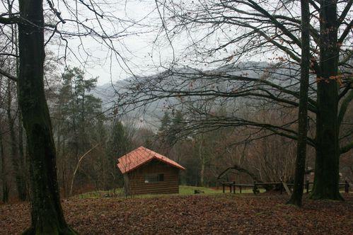 Abri--Maison-foresti-re 2607