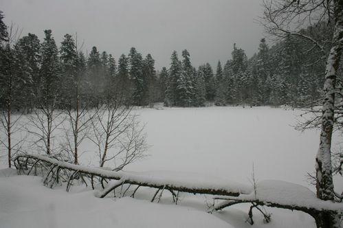 Lac 0255