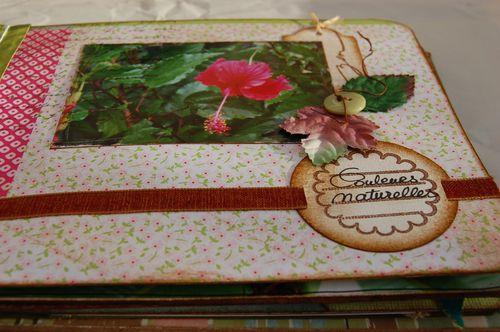 Carnet-de-fleurs 6996