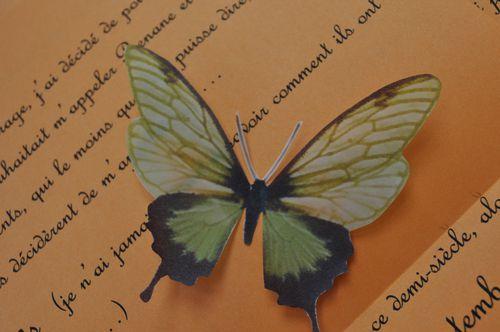 papillons-en-calque-003.jpg