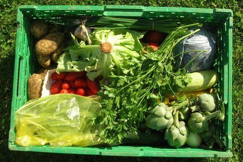 Bric brac de photos le blog de bridget for Cuisinier 3 etoiles legumes