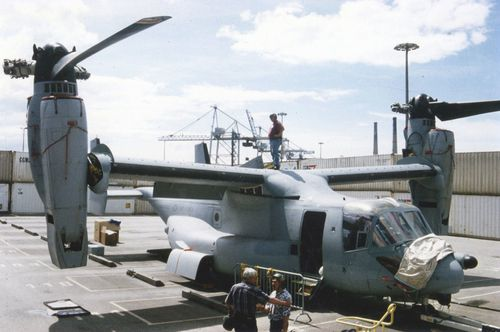 osprey003.jpg