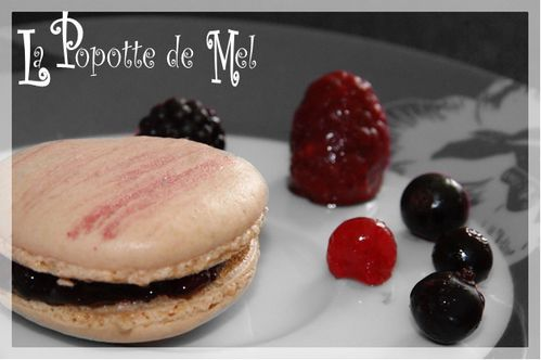 Macarons-aux-fruits-rouges.jpg