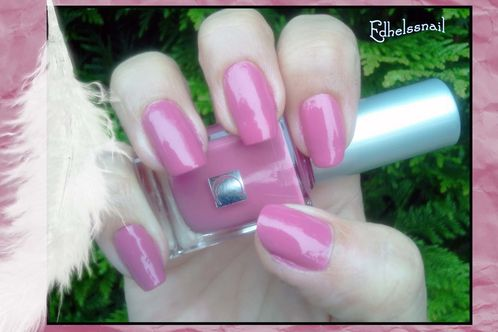 rose carrefour cosmetic1