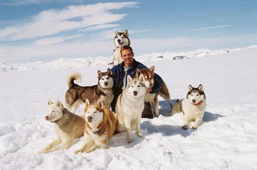 antartica64rz.jpg