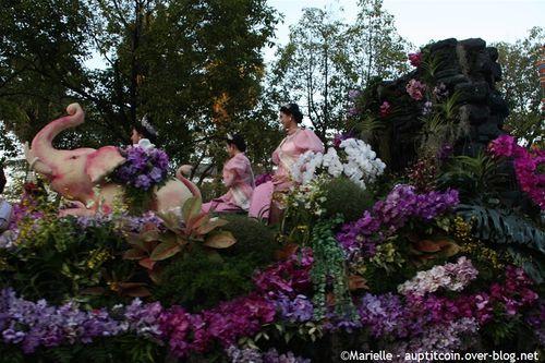 Thaïlande - Chiang Mai : Festival des fleurs