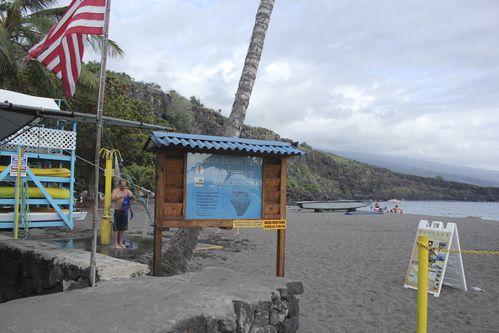 dauphins-kona--big-island-1306.jpg