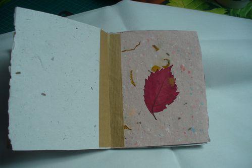 livre en papier recyclé avec feuilles d'arbres