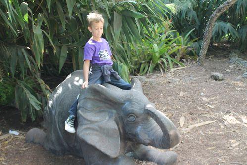 zoo 2518