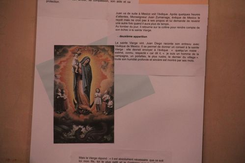 EXPO-ND-DE-GUADALUPE-1195.JPG