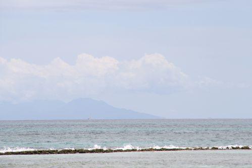 baleine-tival-013.JPG