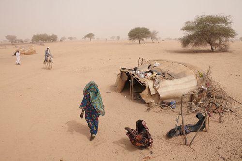 Famine dans le sahel - Tchad - Andrabat.-Bahr-El-Ghazal - O