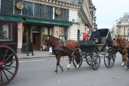 3 Paris d-fil- 12 2010 018