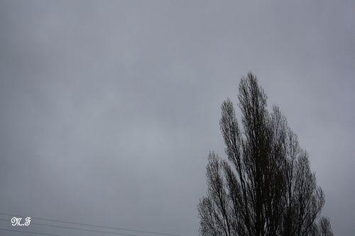 20110219 204