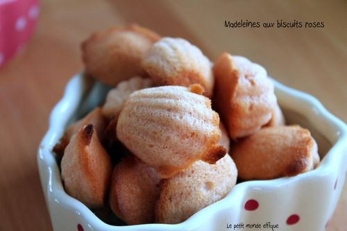 madeleines biscuits roses