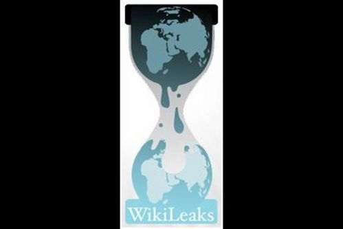0256018F02635248-c2-photo-wikileaks