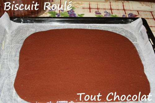 biscuit-roule-tout-chocolat1.jpg