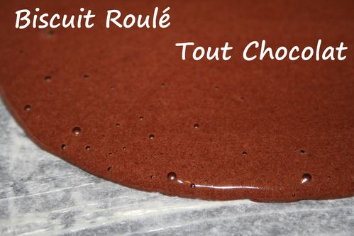 biscuit-roule-tout-chocolat2.jpg
