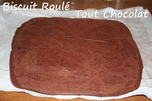 biscuit-roule-tout-chocolat3.jpg