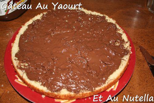 gateau-au-yaourt-et-au-nutella.jpg