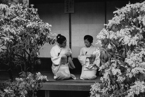 Japan1995-ann-ray