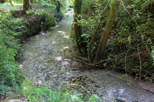 817h1 cours d'eau à Dion