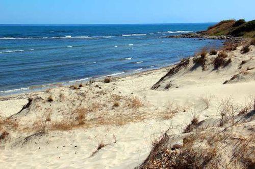 846a2 dunes de Mandra