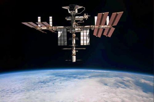 iss81